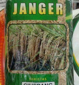ciherang janger